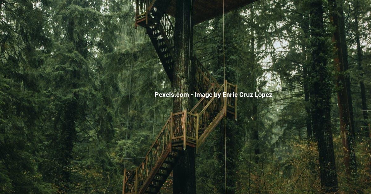 En træhytte med terrasse emmer af stemning